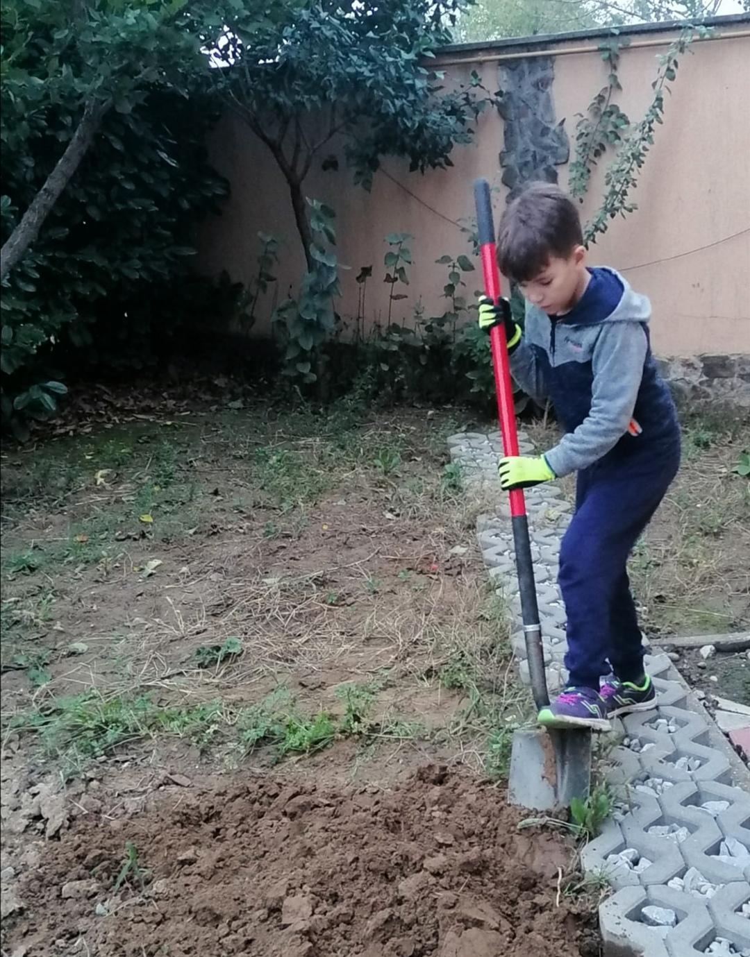 Pregatim terenul pentru legume