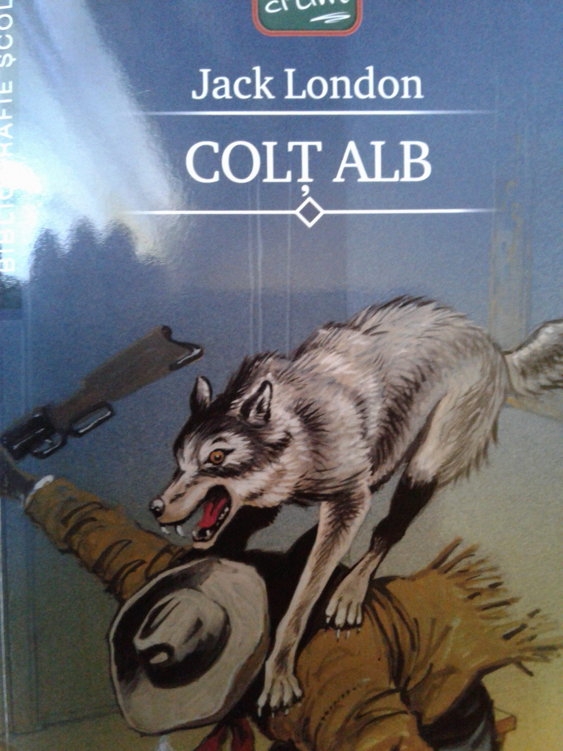 Colț Alb – [8]
