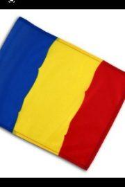 România  – [39]