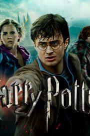 Harry Potter și Camera secretelor – [9]