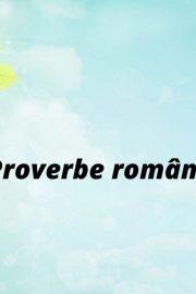 Proverbe (II)