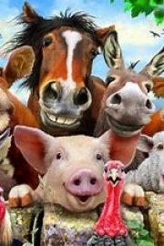 Wir lernen Deutsch 2. – Die Tiere auf den Bauernhof