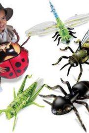 Insecte și păianjeni