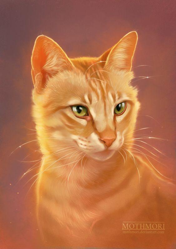 Pisicile Razboince-In Inima Padurii
