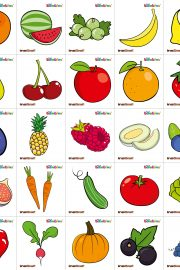 Fruits and colours