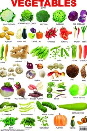 Vegetables and seasons
