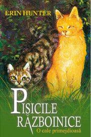 Pisicile războinice – O cale primejdioasă