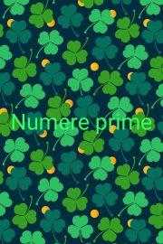 Numere prime